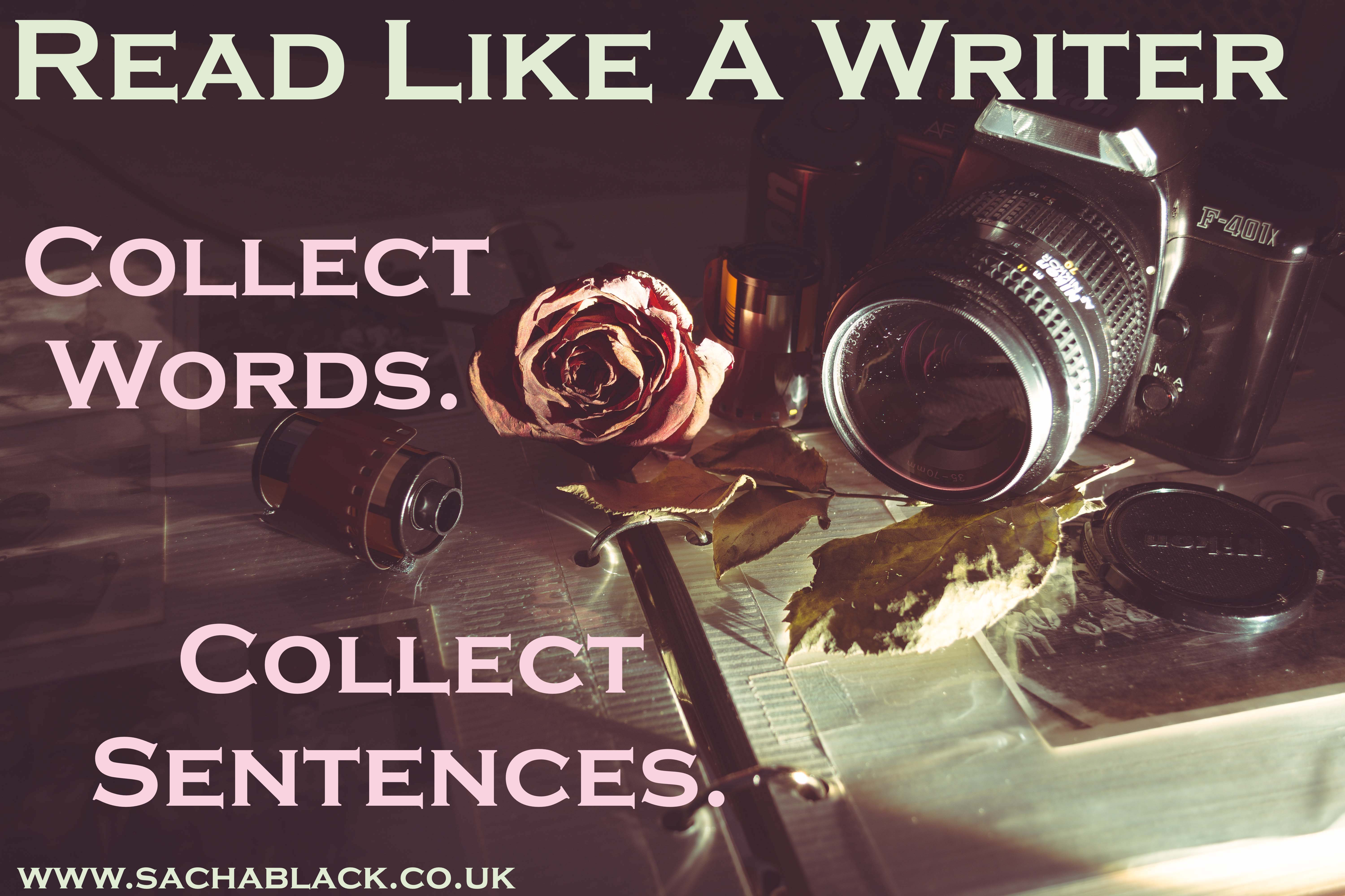 Collect Words, Collect Sentences